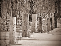 fence-new-hampshire-joe-martin-photographer-nh