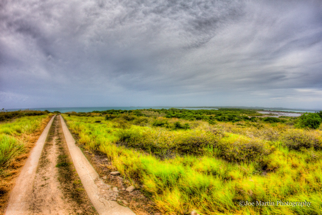 Dirt road in Puerto Rico leading into what looks like the ocean
