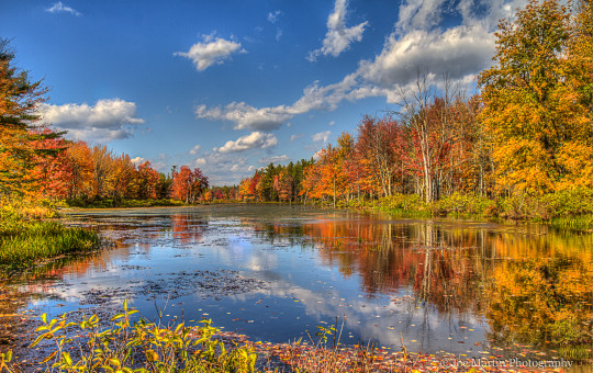New England foliage reflecting of the water in this very colorful photo