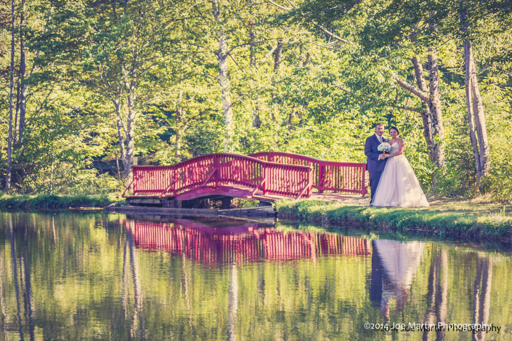 Wedding photo of a couple from across a pound with their reflections in the water.