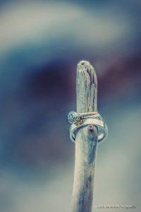 wedding rings on drift wood